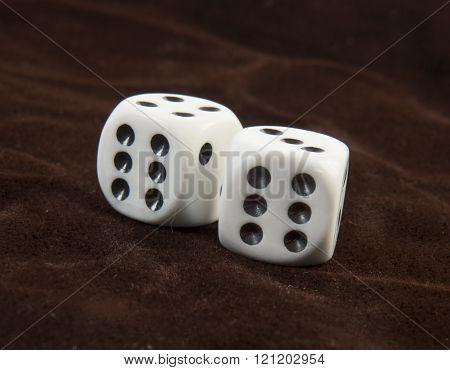 two white dices throw on  braun velvet