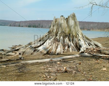Stumped Lake