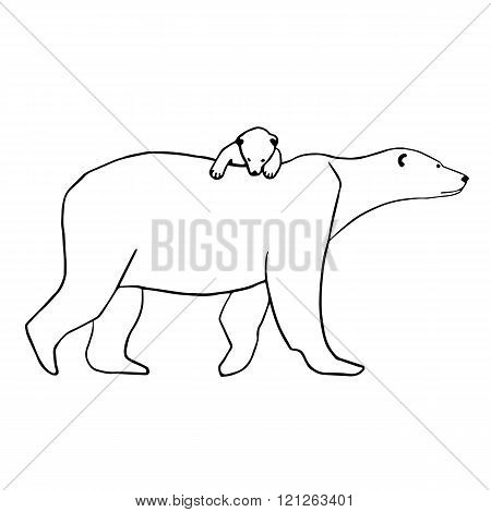 Polar bear and cub. Vector illustration isolated on white