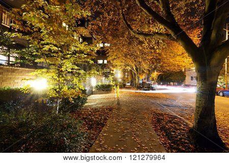 night scene of city road in seattle