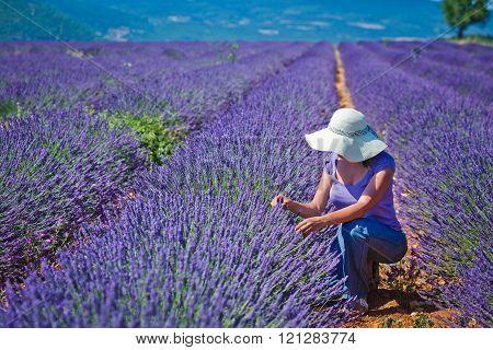 Woman in the lavander fields