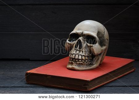 Still Life Photography  With Human Skull And Book On Wood Background.