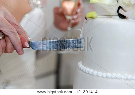 Elderly couple cuts the wedding cake.