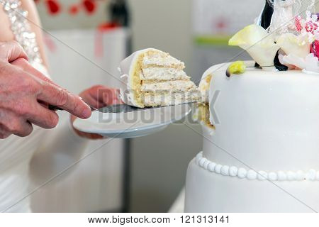 An elderly married couple cuts the wedding cake.