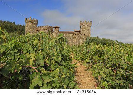 Napa Valley Vineyard And Castle