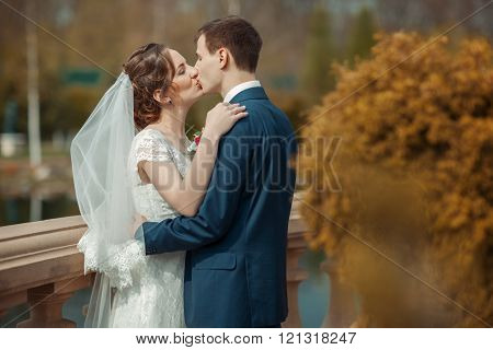 Newlyweds Are Kissing In A Park