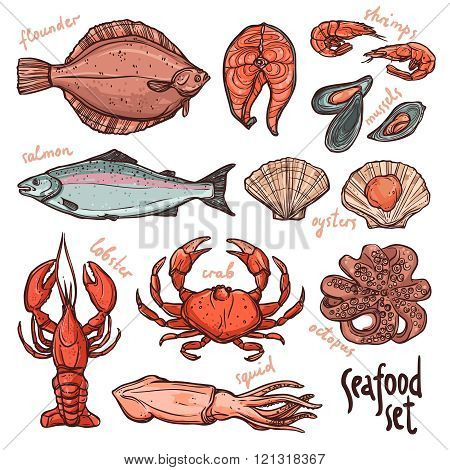 Seafood collection, hand drawn color illustration with lobster, octopus, squid, salmon, flounder, crab, mussels, oysters and shrimps on white background