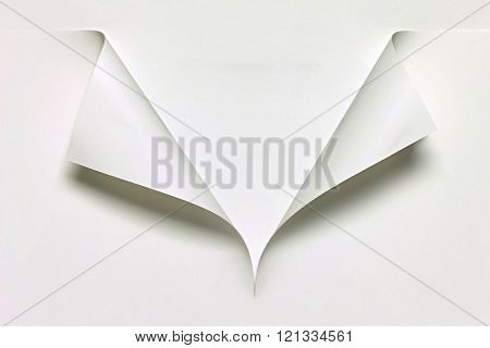 shirt collar made of paper