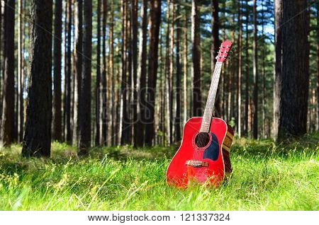 Colourful red acoustic guitar in a summer forest. Musical instrument in nature.