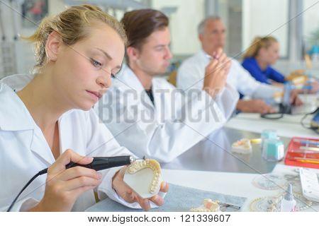 Lady working on dental impressions