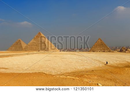 The Pyramids Of Egypt At Giza