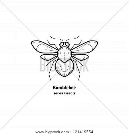 Vector illustration Insect bumble bee. Insect in a modern style mono line isolated on a white background. Black and white image of an insect.