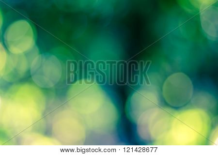 Abstract Bokeh Background From Nature