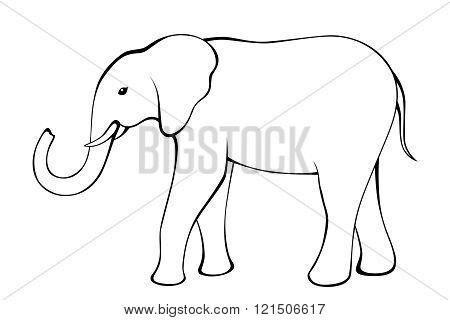 Elephant black white isolated illustration vector