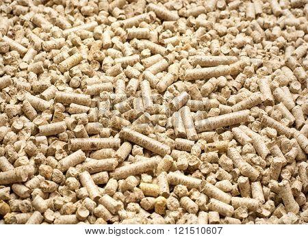 Pellets Biomass- close up studio shot