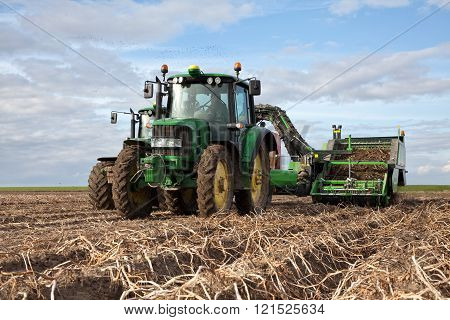 Potatoes harvest at farmland
