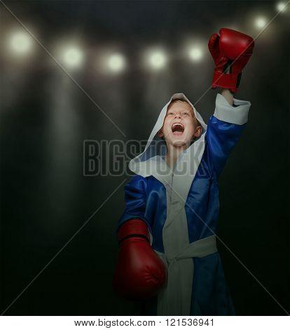 Little Boxer Triumph Time
