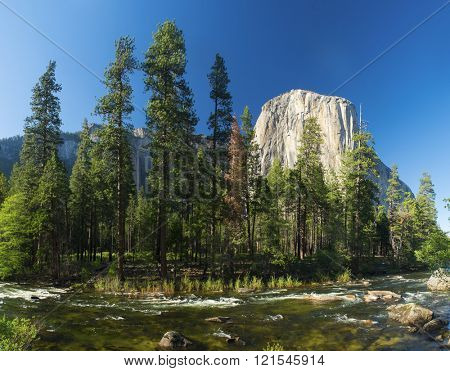 El capitan granite rock seen from the Yosemite Valley across the Merced river, Yosemite National Park, USA