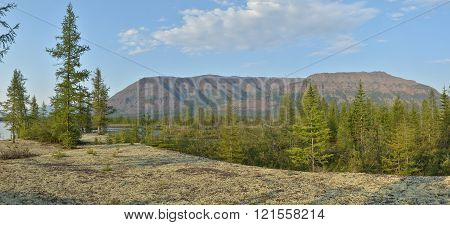 Panorama. The river on the Putorana plateau. Summer water landscape in Taimyr.
