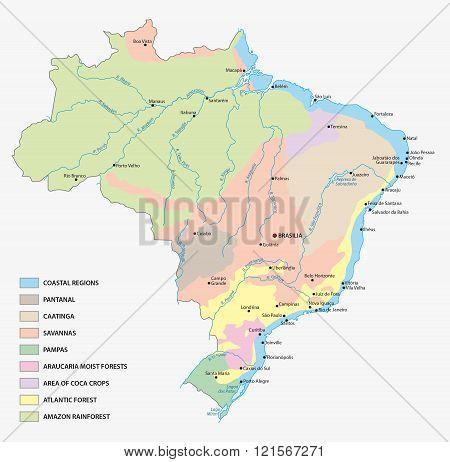 Vegetation Map Of Brazil