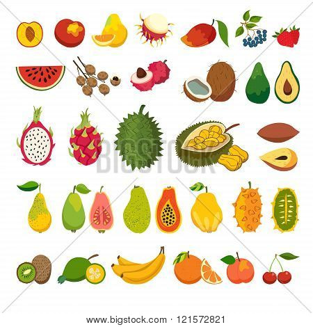 Exotic fruits vector set. Juicy and ripe fruit: papaya guava mango cartoon vector. Natural organic fruits. Litchi jackfruit rambutan dragon fruit. Isolated vector illustration on white background poster
