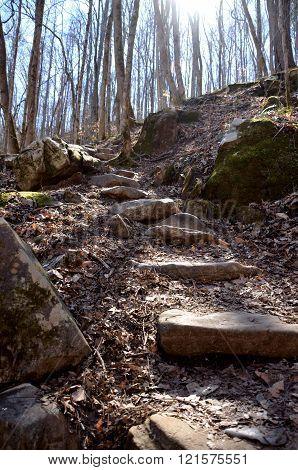 Rock steps on a hiking path