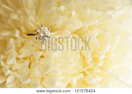 Solitaire ideal cut diamond ring in the midst of beige chrysanthemum.