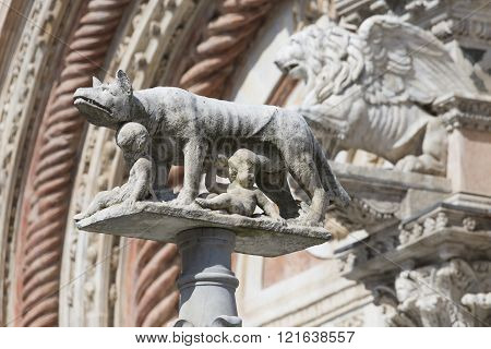 A She-wolf Suckling The Infants Romulus And Remus. Siena In Italy