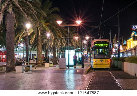 Tram At Moseley Square, Glenelg