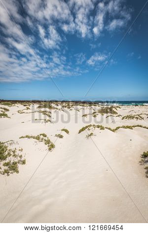 White Sand Beach In The Evening, Lanzarote, Canary Islands, Spain