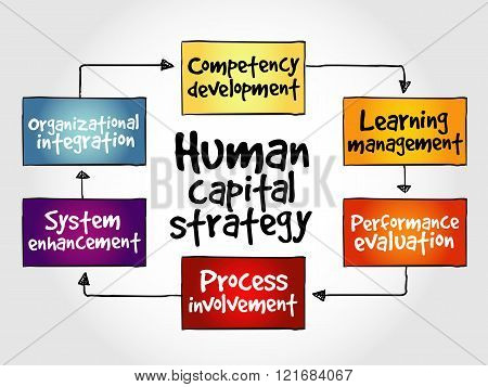 Human Capital Strategy Mind Map