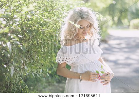 Young Beautiful Pregnant Woman In The Park, Summer Day In The Sun