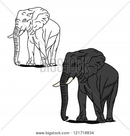Grey Big Elephant (for Coloring)