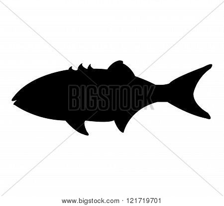 illustrated silhouette fish on white background in vector
