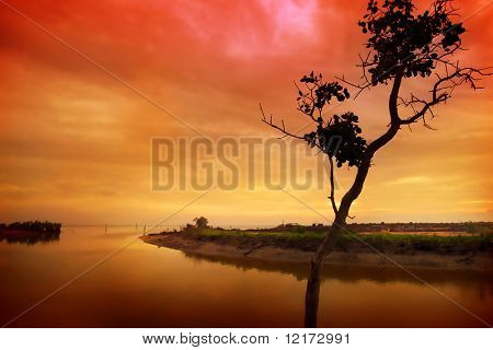 Red and gold sunset at river estuarine