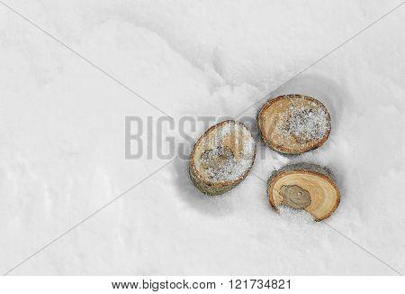 Stumps on natural snowdrift, close up
