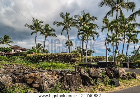 Maui Lava Fields are part of the Ahihi Kinau Natural Area Reserve. The youngest lava flow on Maui with ancient cultural sites and great pools for snorkeling and fishing