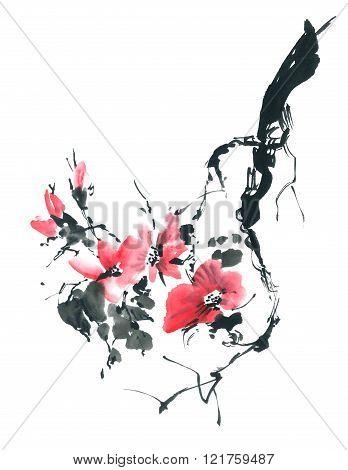 Blossom Sakura. Flowers Illustration..