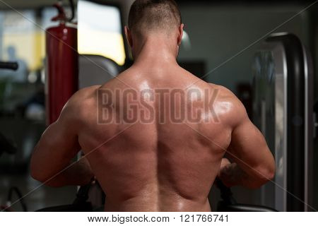 Close Up Of Muscular Back