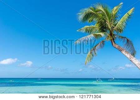 Tropical beach background from Boracay island with coconut palm tree leafs, blue sky and turquoise sea water, Travel Vacation