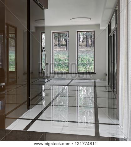 Luxury Hall Interior