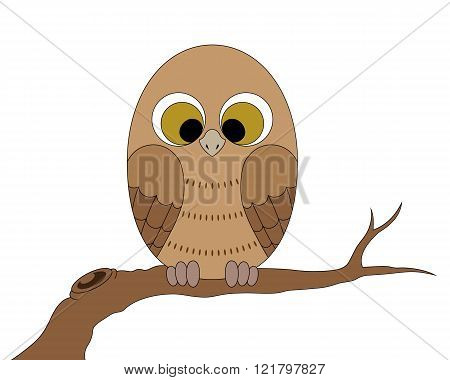 Little owl sitting on a branch.