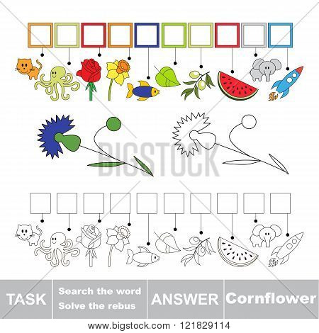 Vector rebus game. Task and answer. Solve the rebus and find the word Cornflower