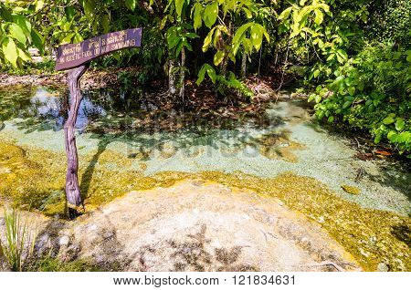 An Ascetic is name of beautiful spring pool formed from the hot spring under the earth crust which is indigo blue and pop op on the time in the forest national park at Krabi province Thailand