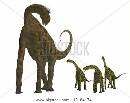 Atlasaurus was a large herbivorous dinosaur that lived in the Jurassic Period of Morocco North Africa.