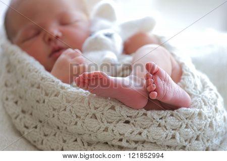 Portrait sleeping newborn baby  Portrait sleeping newborn baby