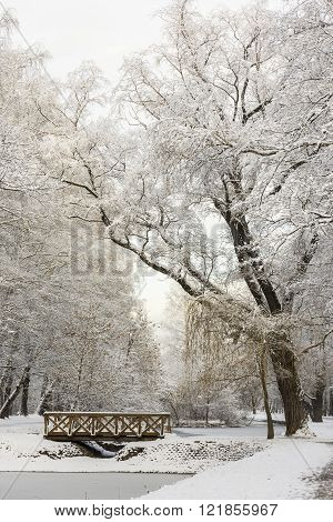 Winter Forest Landscape. Trees Under A Thick Layer Of Snow. Russia, Moscow, Sokolniki Park