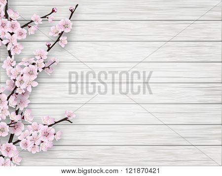 Spring Cherry Pink Flower On White Old Wood Background