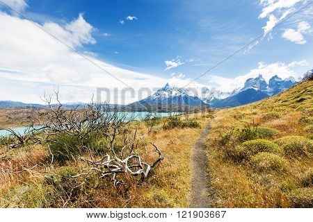beautiful view from hike to mirador condor at lake pehoe and cuernos del paine in torres del paine national park patagonia chile