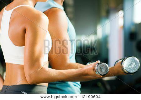hombre y una mujer (sólo brazos y cuerpo) entrenamiento con pesas (foco en peso, profundidad de fiel